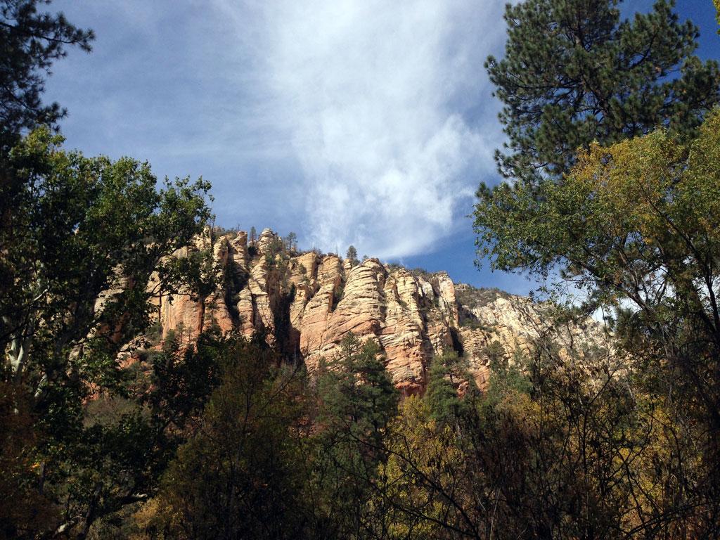 Cliffs Overlooking Coconino Forest