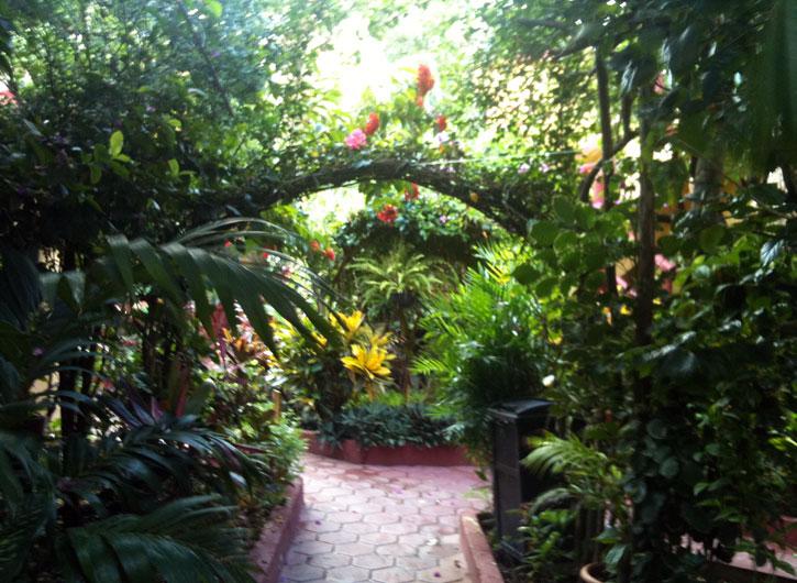 Fusion Hotel Gardens